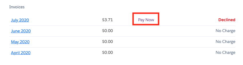pay_now.png